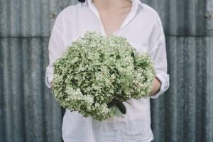 kwiaty, hortensje, astry, lato, wesele, ślub